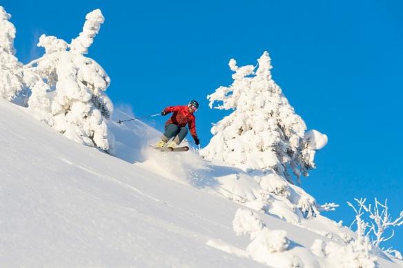 Foto av en skikjører som kjører offpiste i Trysilfjellet