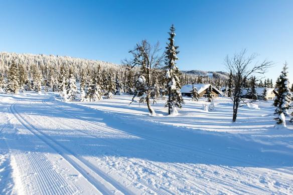 Malmlaft har hytter med gode ski in, ski out muligheter på Sjusjøen