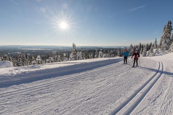 Bilde av langrennsløpere i flotte vinteromgivelser